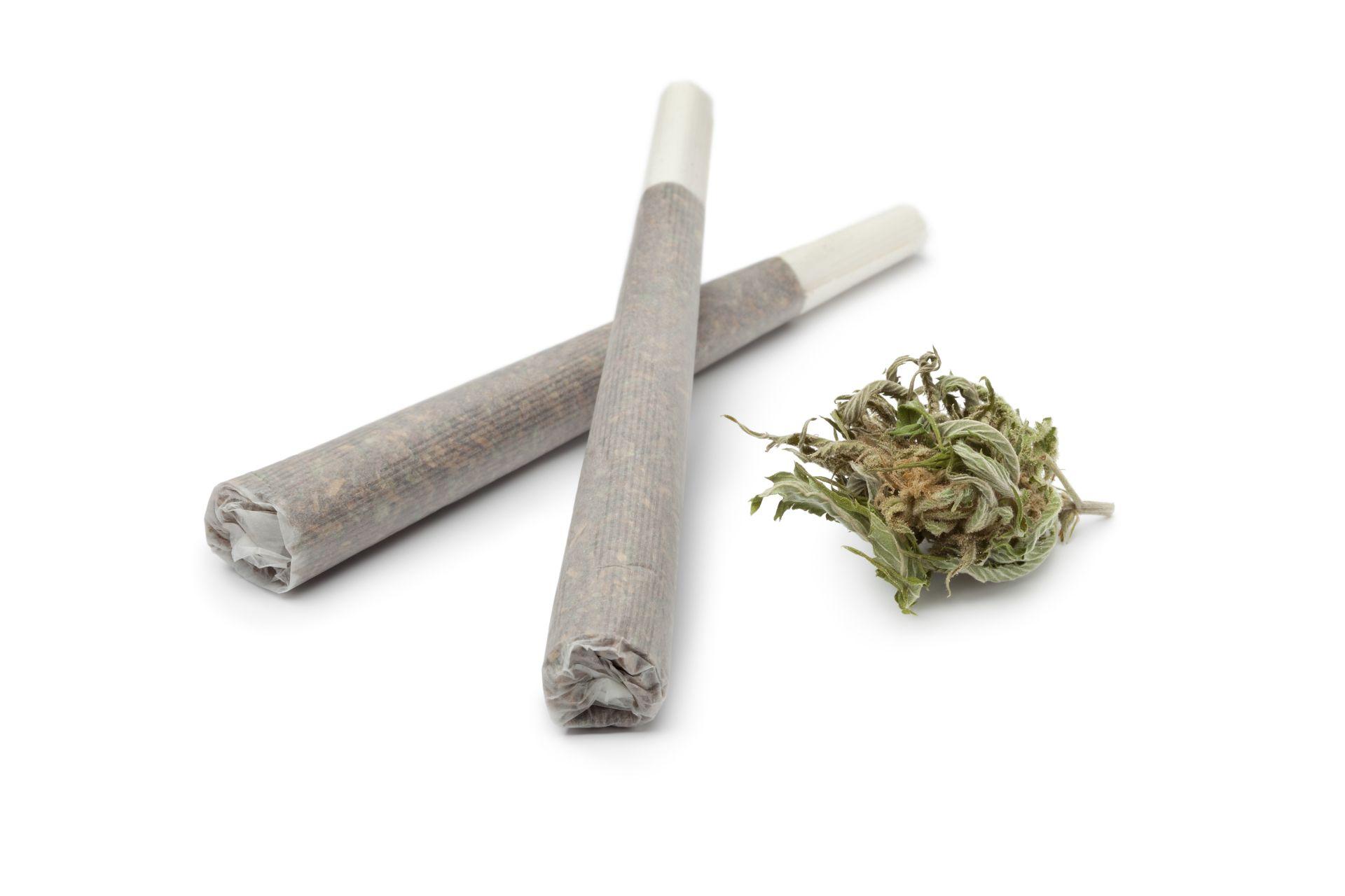 Thl Kannabis